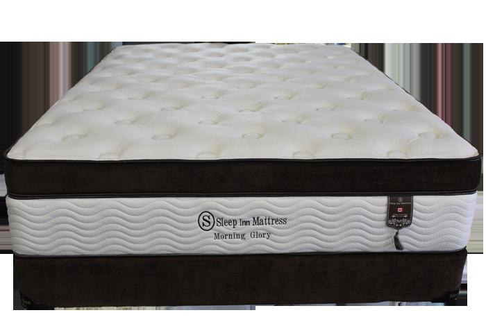 morning glory plush mattress 1